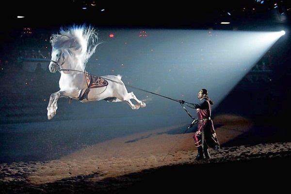 The new Medieval Times show debuts at the Kissimmee castle in June, but the same show already has begun its run in California.