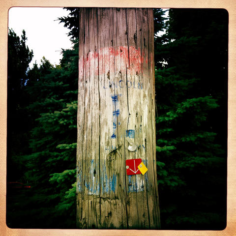 A faded Lincoln Highway sign on a telephone pole in Franklin Grove.