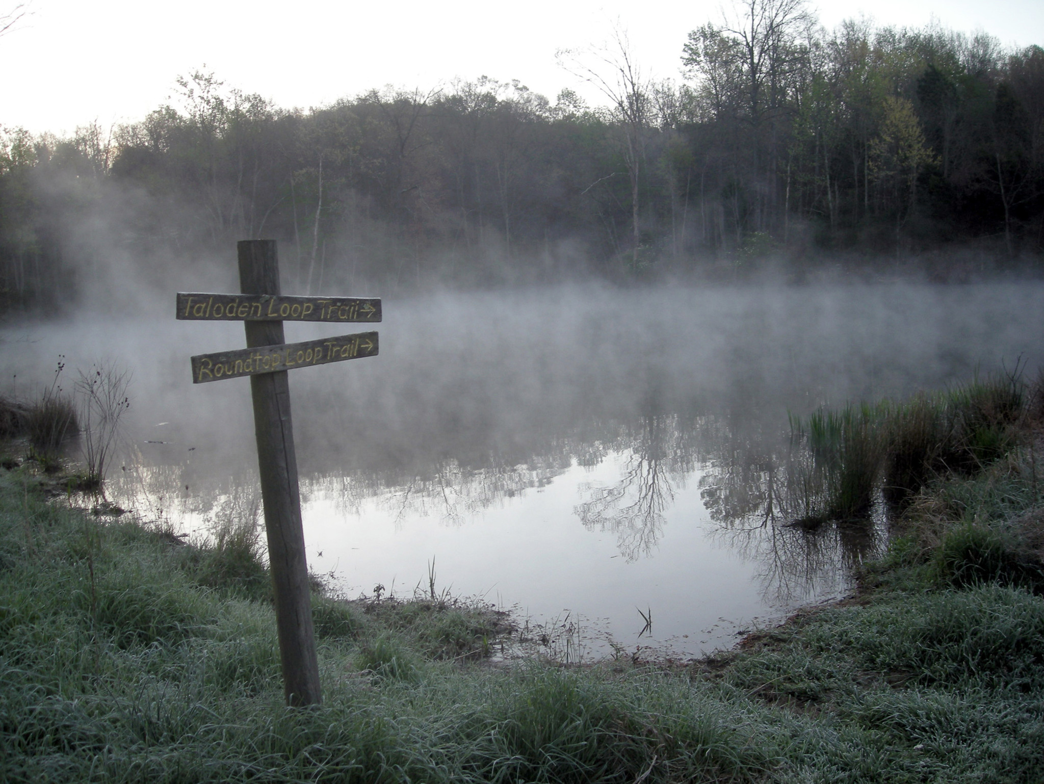 Morning fog on Taloden Pond on the heavily wooded Taloden Woods Trail at Ohio's Highlands Nature Sanctuary.