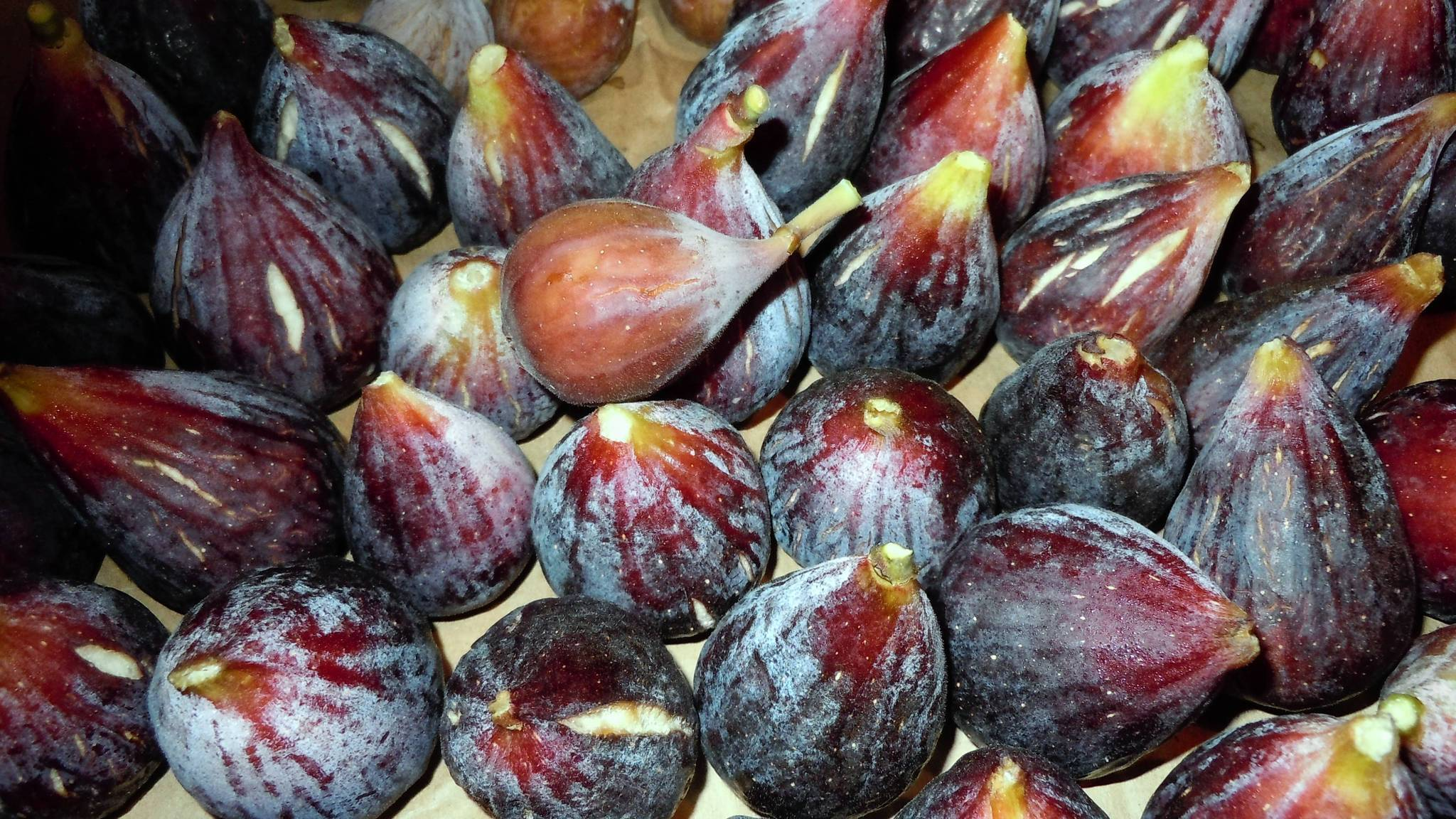 A fresh fig is a soft fruit about the size of a small plum that, depending on variety, is either round or shaped like a teardrop.