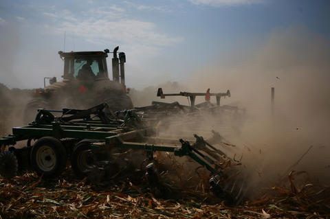 Terry LaForge discs under corn on the farm of Marvin and Sandy Frick near Mt. Vernon in Jefferson County, Ill. An insurance adjustor said there was no corn that could be harvested.