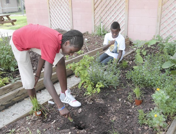 Abetna Jacquet, 13, left, and Paul Jacquet, 11, plant new crops in the garden at New Image Youth Center on Parramore Avenue.