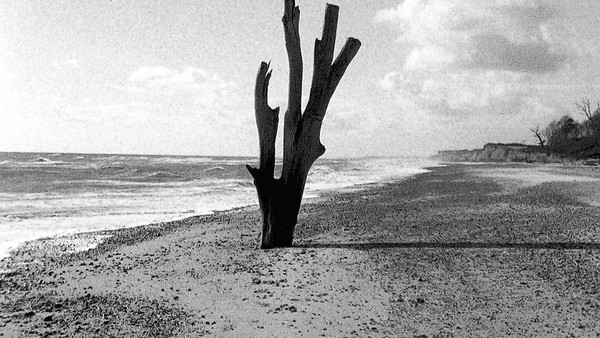 A still from Grant Gee&#039;s movie &quot;Patience (After Sebald).&quot;