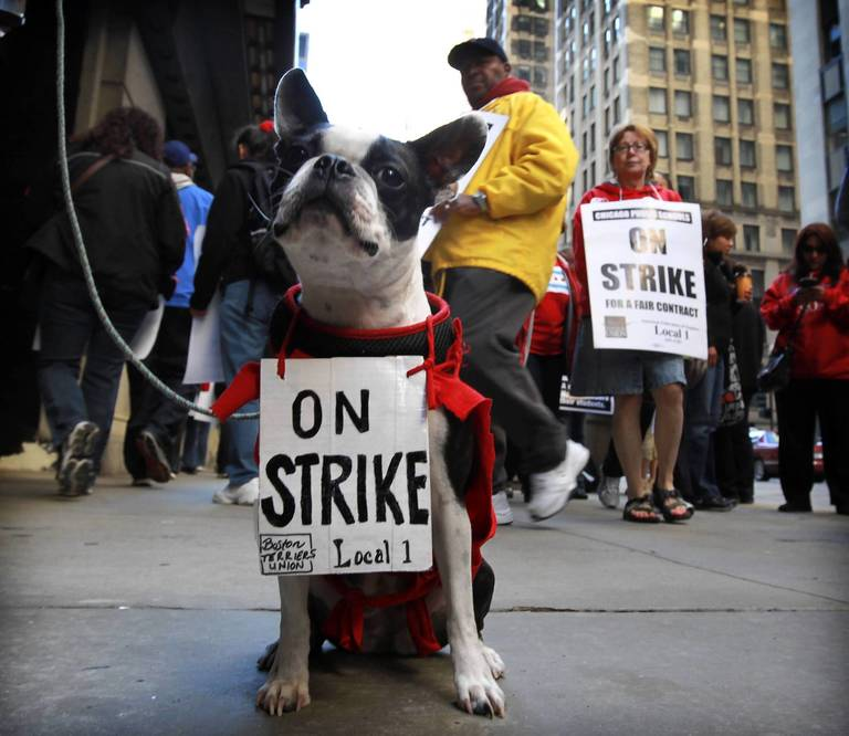 Union Ends Chicago Teacher Strike