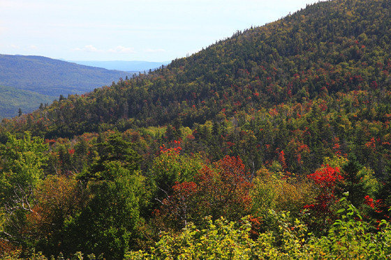 New Hampshire photographer and foliage expert Jim Salge spotted this early color at the higher elevations in New Hampshire's White Mountains earlier this month.