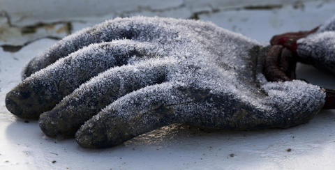 "A layer of frost coats waterproof work gloves left exposed overnight  on the stern of the ""Lauren M"" as it rests at it's berth on Deep Creek in Newport News early Tuesday morning. Freezing temperatures left a thin layer of frost and a thin skim of ice on the creek early Tuesday."