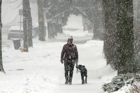 Marty Vexter of Clarendon Hills walks her Portuguese water dog Nigel, in Downers Grove.
