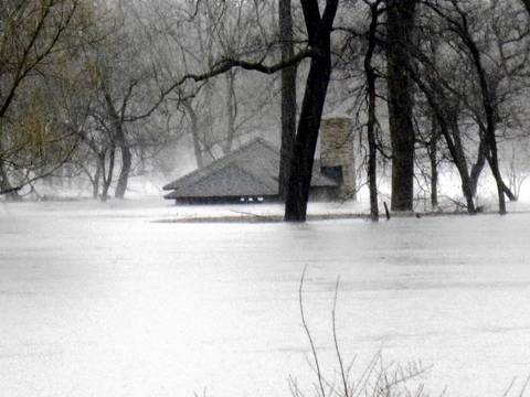 Water overtakes McDowell Grove Forest Preserve in Naperville.