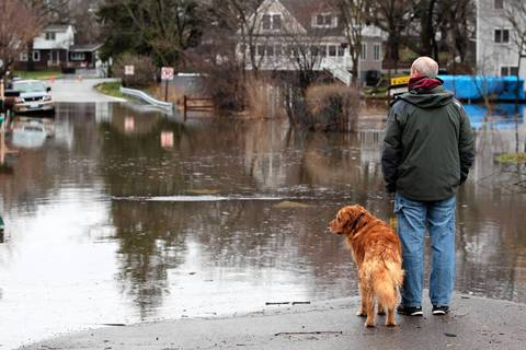 """John Hentges and his dog """"Shea"""" look over flooding on Willow Road in Mundelein."""