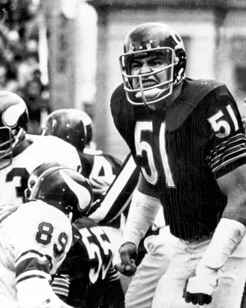 Dick Butkus is arguably one of the best linebackers ever to play, possessing strength, agility and quickness to cover running backs and tight ends on the same play. He played for the Bears from 1965 to 1973, making seven Pro Bowl teams, collecting 22 interceptions and recovering 27 fumbles. He was elected to the Hall of Fame in 1979, his first year of eligibility.