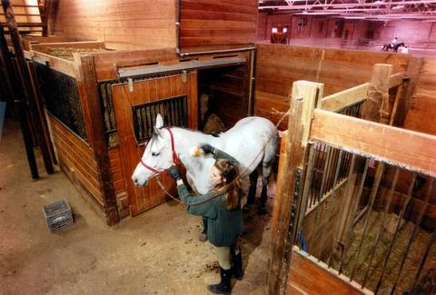 The Noble Horse Co. on Orleans Street was built as a stable in 1871 and renovated in 1922 to include a riding academy. In 1997, developers wanted to buy the land and move the stable out. Monica Rauschenbach, the manager and horse owner, brushes out her horse, Odie on May 14, 1997. Noble Horse Co. was the last riding stable in Chicago and now is operated as Noble Horse Theatre.