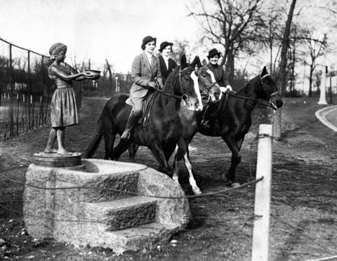 On New Year's Day in 1937 the weather was close to freezing, but still warm enough to lure horseback riders to the bridal path in Lincoln Park.