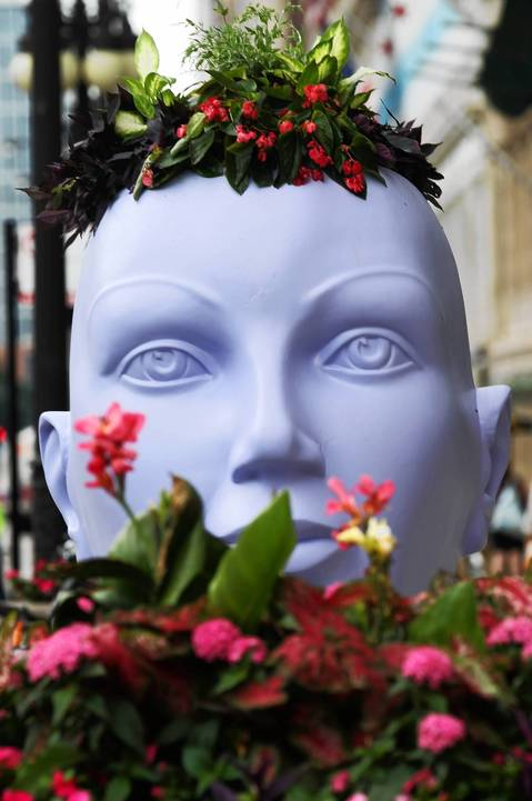 A planter head has a faraway look on it's face.