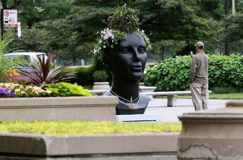 A head planter sits amidst other planter beds.