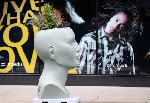 A young man in a window display appears to be looking at this planter.