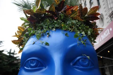 A blue planter wears a spiky hairdo.