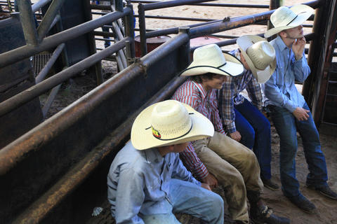 Bull riders wait their turn during the Kissimmee Sports Arena Rodeo on Saturday, July 13, 2013. (Megan May/Orlando Sentinel)