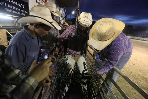 A bull rider mounts a bull during the Kissimmee Sports Arena Rodeo on Saturday, July 13, 2013. (Megan May/Orlando Sentinel)