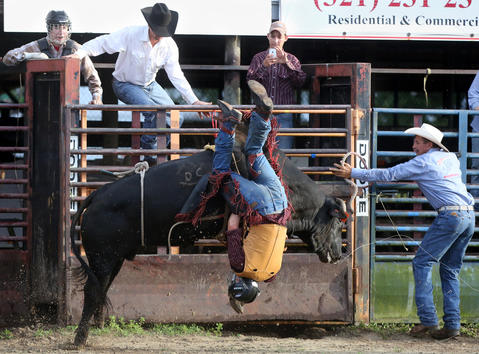A bull rider is bucked off during the Kissimmee Sports Arena Rodeo on Saturday, July 13, 2013. (Megan May/Orlando Sentinel)