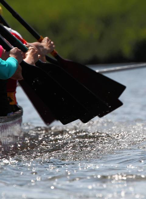Dragon boat paddles are in sync during practice.