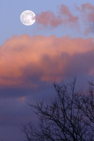 As the setting sun turns the clouds vibrant shades of pink and purple, a waxing moon rises in the eastern sky.  Though it looks perfectly round, the moon will not reach total fullness until tomorrow, January 7.