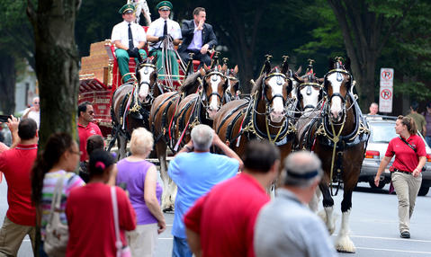 The Budweiser Clydesdales makes their way north on New Street Thursday afternoon.