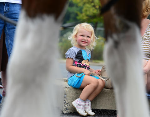 Sienna Verdina, 2, of Easton watches the The Budweiser Clydesdales as they start their journey in South Bethlehem Thursday afternoon.