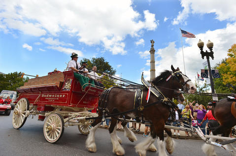 With Mayor Sal Panto rides along with the Budweiser Clydesdales in downtown Easton on Friday, September 13, 2013. The Budweiser Clydesdales marched through downtown Easton up to College Hill delivering cases of beer along the way. .