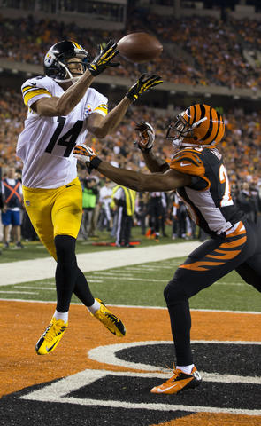 Sep 16, 2013; Cincinnati, OH, USA; Pittsburgh Steelers wide receiver Derek Moye (14) catches a touchdown pass over Cincinnati Bengals cornerback Leon Hall (29) at Paul Brown Stadium.
