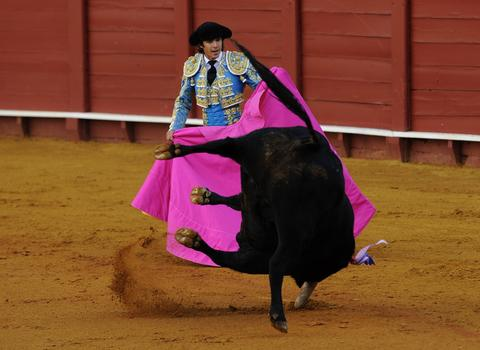 French matador Sebastian Castella performs a pass on a bull during a bullfight at the Maestranza bullring in Sevilla on September 28, 2013.