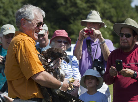 Ed Clark, Jr., president and founder of The Wildlife Center of Virginia, holds a rescued eaglet before releasing it at Jamestown Beach Park in James City County on Friday. The eaglet was blown out of its nest at Jamestown Island during a severe storm on June 13.