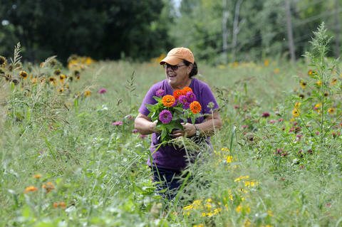 Cosby Gutt, at her Gutt Family Farm in Glastonbury, CT, harvests an arm full of zinnias for a customer's wedding. The farm has been in her husband's family for more than 100 years.
