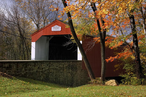 On this tour, you'll meander through country backroads, view a dozen beautiful covered bridges and ogle the brilliant red, orange and yellow landscape close up. If all that makes you hungry, pop in at the Apple Festival in the 18th-century Peddler's Village (Nov.2-3) and check out the remarkable scarecrow collection.