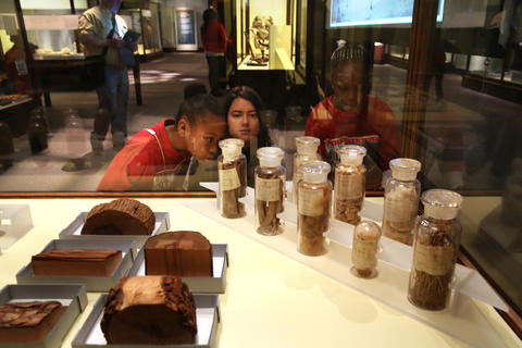 Students, Trashonna Cannon and Jamaica Wright, both 9, from Leif Ericson Elementary Scholastic Academy, look at an exhibit of an array of grains, wood fibers, oils, resins with Anne Marie Fayer, an educator with the Field Museum.