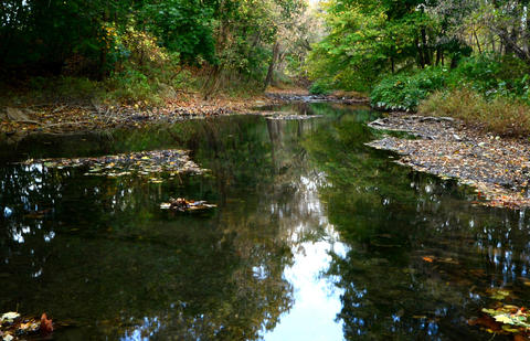 The Jordan Creek flows along early in the day. This is on a fall morning on the Jordan Creek in Whitehall Township.