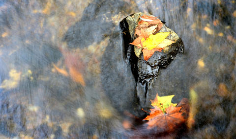 The water of the Jordan Creek flows by fallen leaves in this one-second exposure photo. This is on a fall day in Covered Bridge Park in South Whitehall Township.