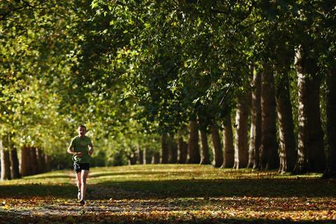 A man jogs in St James's Park on November 4, 2013 in London, England. After the recent stormy weather, in many parts of the UK the autumn colours of trees are beginning to reach their peak as the season moves towards winter.