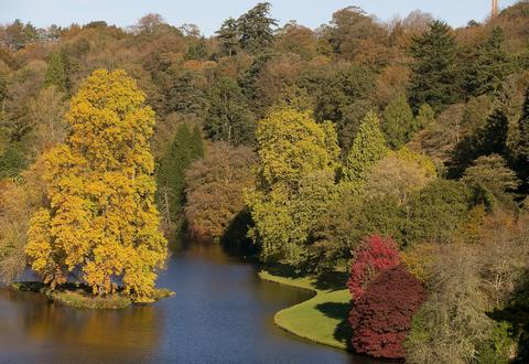 The sun shines on trees that are displaying their autumn colours surrounding the lakeside at the National Trust's Stourhead on November 4, 2013 in Wiltshire, England. After the recent stormy weather, in many parts of the UK the autumn colours of trees are beginning to reach their peak as the season moves towards winter.