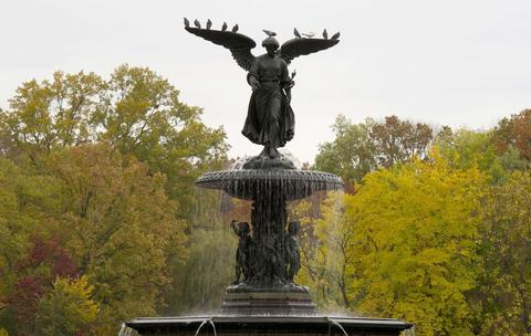 Pigeons rest on the Bethesda Fountain on November 1, 2013 in New York's Central Park. Fall colors could be found in the park as a cool weather front moved through the area.