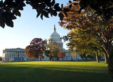 The US Capitol building is seen on a sunny autumn afternoon in Washington on November 3, 2013.