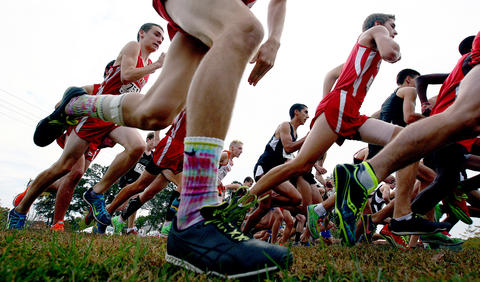 Local high school cross country runners start the boys heat of the Conference 19 Cross Country Championships Wednesday at Windsor Castle Park in Smithfield.