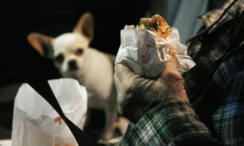 "In his owner's car in the parking lot, Tito, one of Jimmy Kidd's traveling chihuahuas, waits patiently for his plain What-a-burger that he will split with Kinsey, the other dog. Kidd buys an extra for the dogs when he goes for dinner.   ""As part of doing a photo story on What-A-Burger, I went in the evening looking for an Edward Hopper ¿Night Café¿ type photo. While there, I wandered around the parking lot, looking for people eating in their car to flesh out the photos. In one car, Tito, one of Jimmy Kidd's traveling Chihuahuas, was waiting patiently for his plain What-a-Burger. The other dog, Kinsey, was afraid of the flash, but luckily, Adrin had lent me a 135 f2 which let me shoot with available light. I did two versions, dog in focus, hamburger in focus. Since the story was about What-A-Burger and not the dog, this seems like the better choice."""