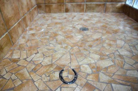 The shower floor in Rita Crundwell's personal home in Dixon is adorned with a horseshoe.