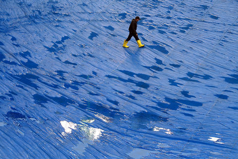 A man walks across the tarp covering the field before the NFL football game between the Chicago Bears and the Baltimore Ravens on Sunday at Soldier Field in Chicago.