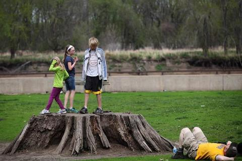 Children play on a large tree stump in Starved Rock State Park
