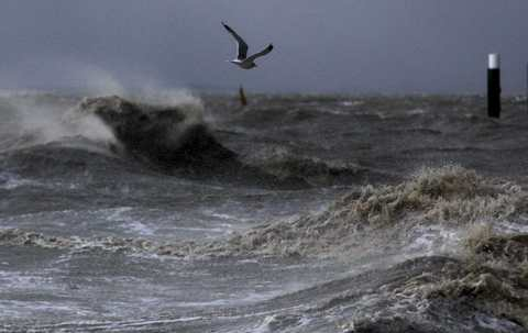 A seagull flies over the North Sea near the town of Emden, December 6, 2013. Hurricane-force Storm Xaver blasted towards mainland Europe on Thursday after cutting transport and power in northern Britain and killing three people in what meteorologists warned could be the worst storm to hit the continent in years.