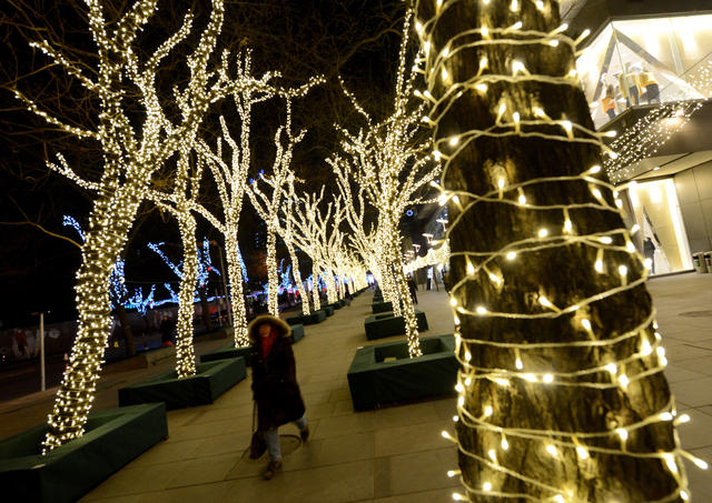 A Chinese woman walks past Christmas decorated trees on display in Beijing on December 10, 2012.