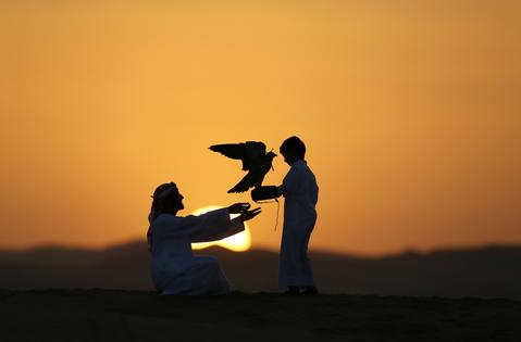 Emirati Mohammed Rakan Bin Harwon Al-Qubassiy (L) hands his falcon to a boy at the Liwa desert, 220 kms west of Abu Dhabi, on the sidelines of the Mazayin Dhafra Camel Festival on December 21, 2013. The festival, which attracts participants from around the Gulf region, includes a camel beauty contest, a display of UAE handcrafts and other activities aimed at promoting the country's folklore.