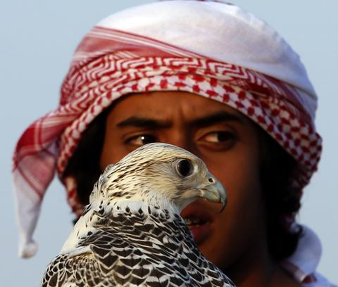 A young Emirati boy holds his falcon at the Liwa desert, 220 kms west of Abu Dhabi, on the sidelines of the Mazayin Dhafra Camel Festival on December 21, 2013. The festival, which attracts participants from around the Gulf region, includes a camel beauty contest, a display of UAE handcrafts and other activities aimed at promoting the country's folklore.
