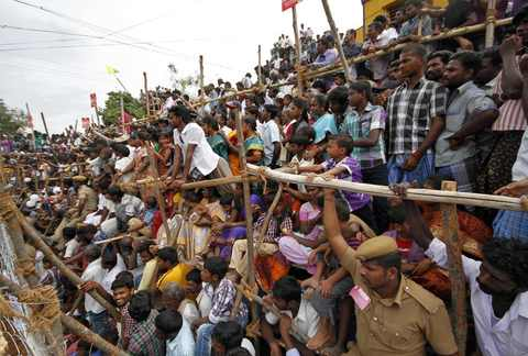 Spectators watch as villagers chase a bull during a bull-taming festival on the outskirts of Madurai town, about 500 km (310 miles) from the southern Indian city of Chennai, January 15, 2014.